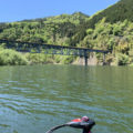 奥矢作ダムに行ってきました!